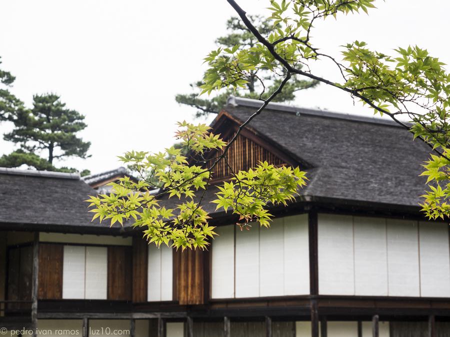 Villa Imperial Katsura. 1662 luz10 pedro ivan ramos martin kyoto