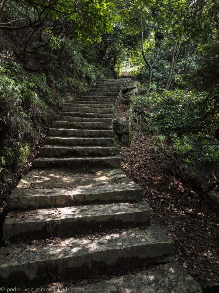 ¿Hacia dónde llevan esas escaleras?  miyajima luz10 pedro ivan ramos martin
