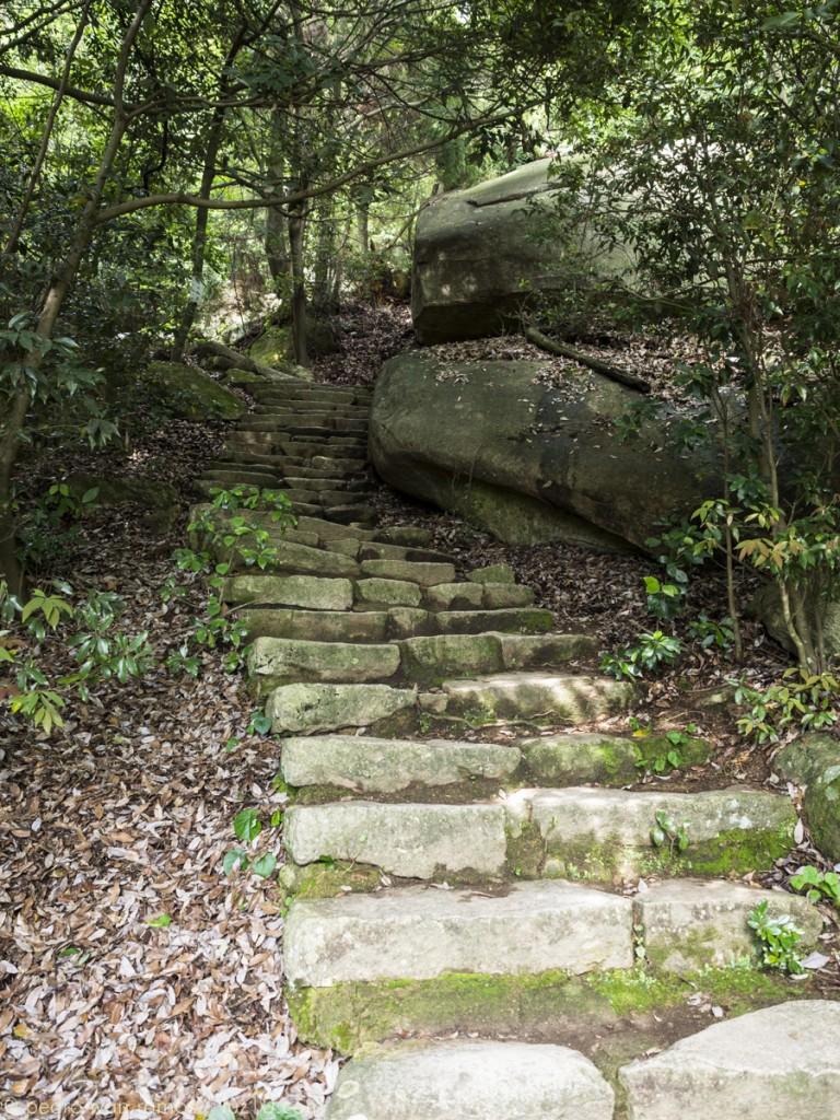 miyajima luz10 Esas escaleras llevan... hacia arriba!