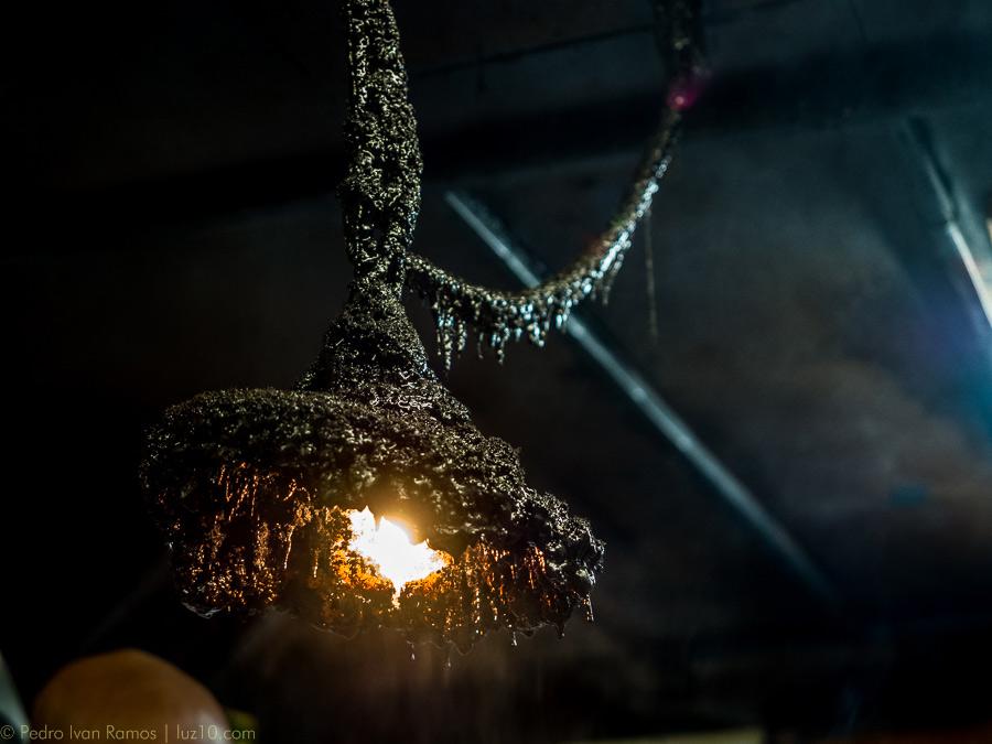 shinjuku © pedro ivan ramos martin luz10