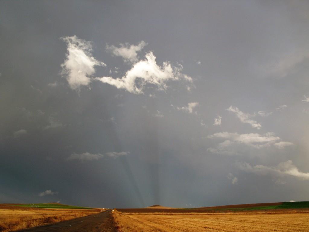Tormenta, lluvia y olor a tierra mojada